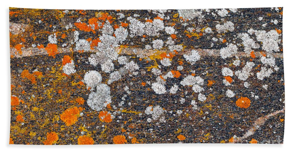 Moss Bath Sheet featuring the photograph Colorful Moss Spots On A Gneiss Rock by Les Palenik