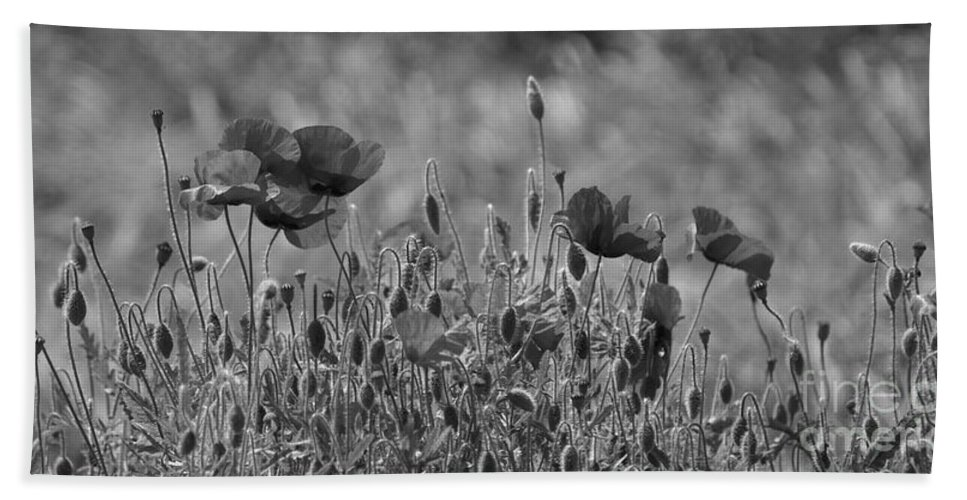 Poppies Bath Sheet featuring the photograph Colour Blind Poppies 2 by Carol Lynch
