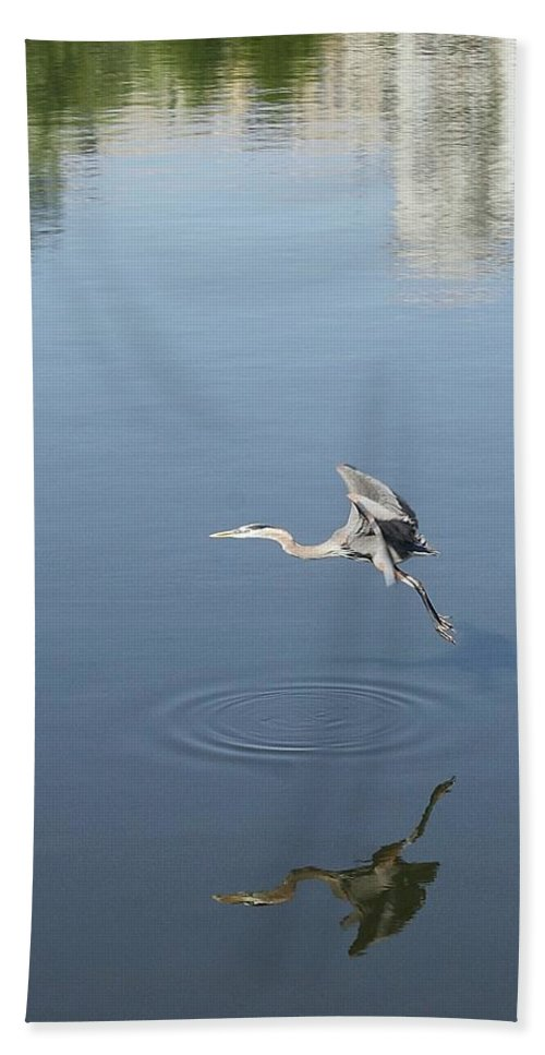 Art Bath Sheet featuring the photograph Coming In For A Landing by Ellen O'Reilly