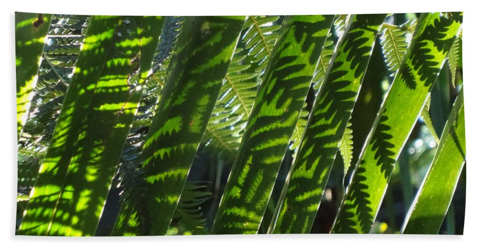 Palms Hand Towel featuring the photograph Common Beauty by Ethel Mann