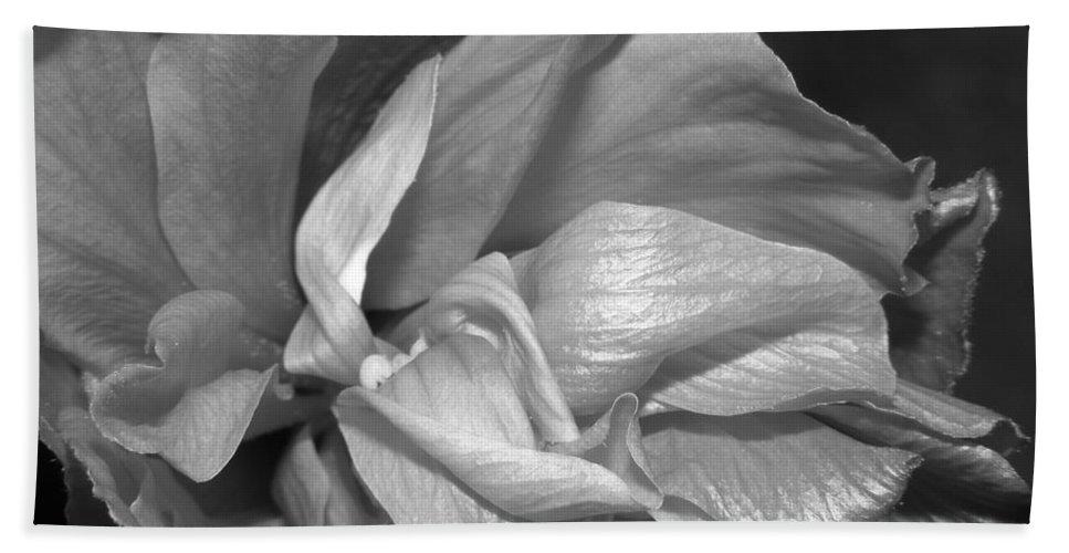 Black Bath Sheet featuring the photograph Contrasting Hibiscus by Jennifer Van Niekerk
