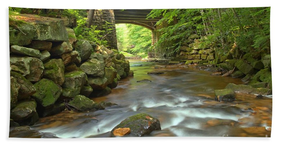 Toms Run Hand Towel featuring the photograph Cook Forest Stream Under The Bridge by Adam Jewell