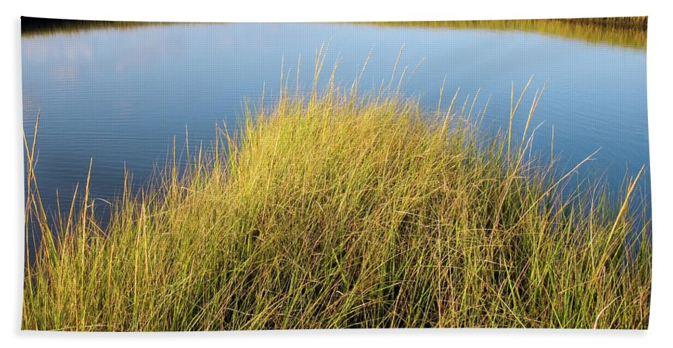 Bayou Hand Towel featuring the photograph Cordgrass And Marsh, Southern by Andrew Kornylak