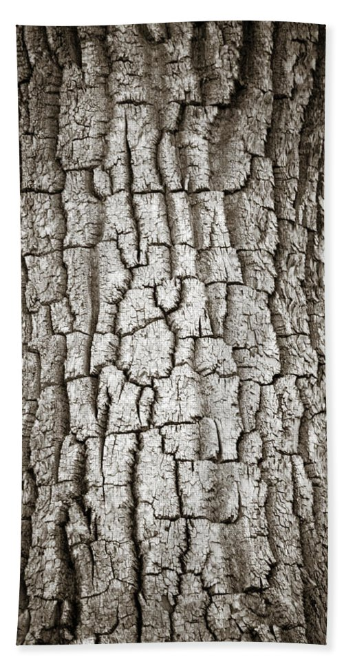 Cottonwood Hand Towel featuring the photograph Cottonwood Bark 1 by Marilyn Hunt