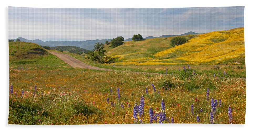 Wildflowers Bath Sheet featuring the photograph Cottonwood Canyon by Lynn Bauer