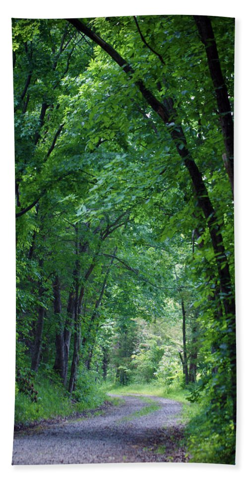 Tree Bath Sheet featuring the photograph Country Lane by Cricket Hackmann
