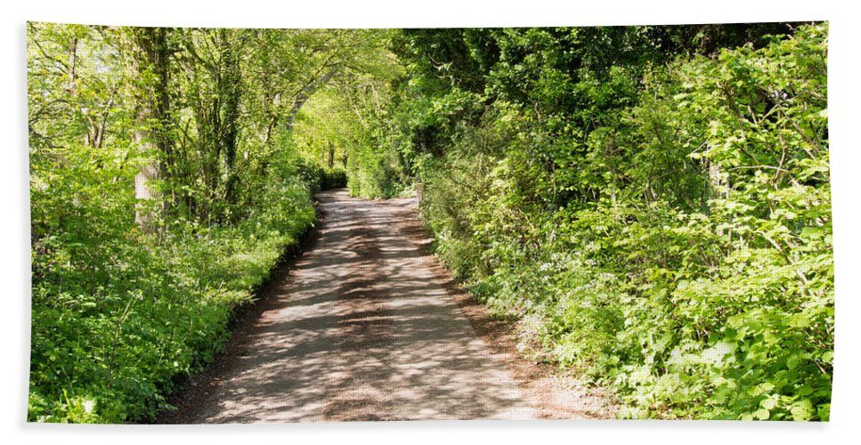 Avenue Bath Sheet featuring the photograph Country Lane by Roy Pedersen