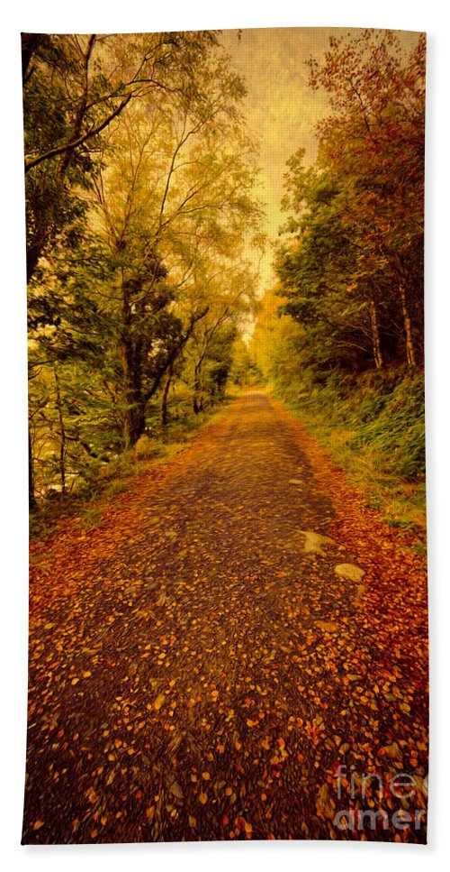Autumn Bath Sheet featuring the photograph Country Lane V2 by Adrian Evans
