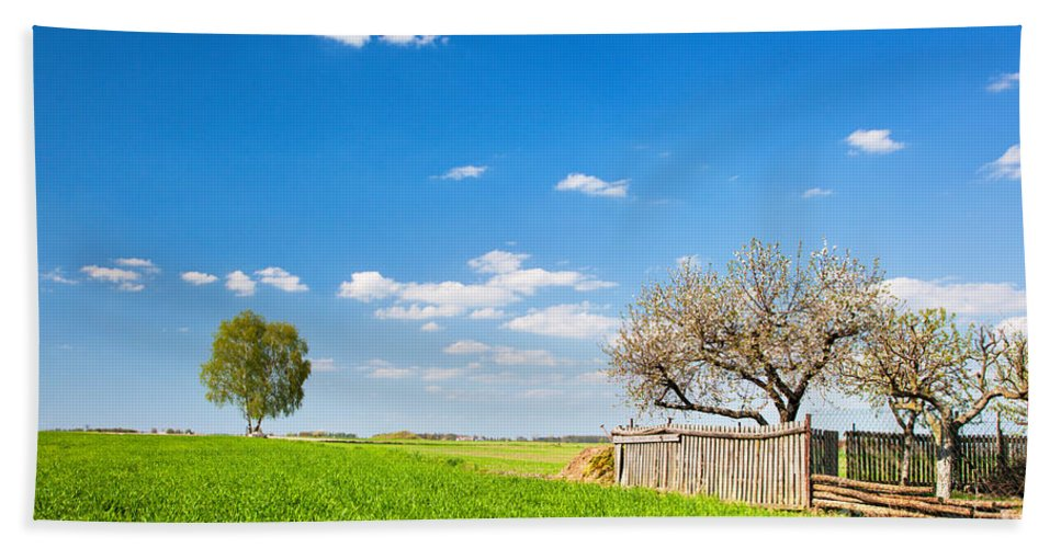 Field Bath Sheet featuring the photograph Countryside Landscape During Spring With Solitary Trees And Fence by Michal Bednarek