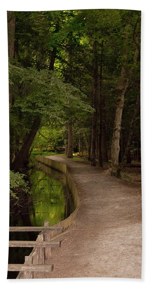 Cades Cove Bath Sheet featuring the photograph Cove Path by Terry Anderson