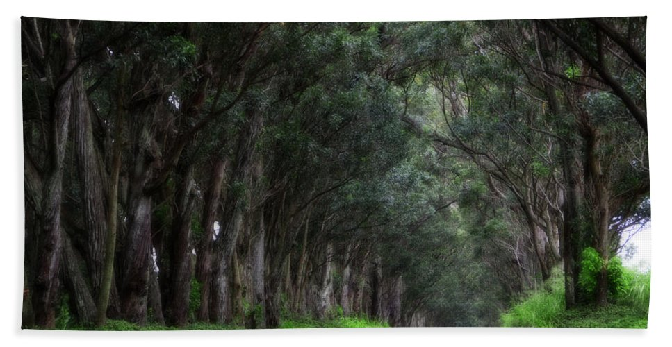 Hawaii Hand Towel featuring the photograph Covered By Trees by Douglas Barnard