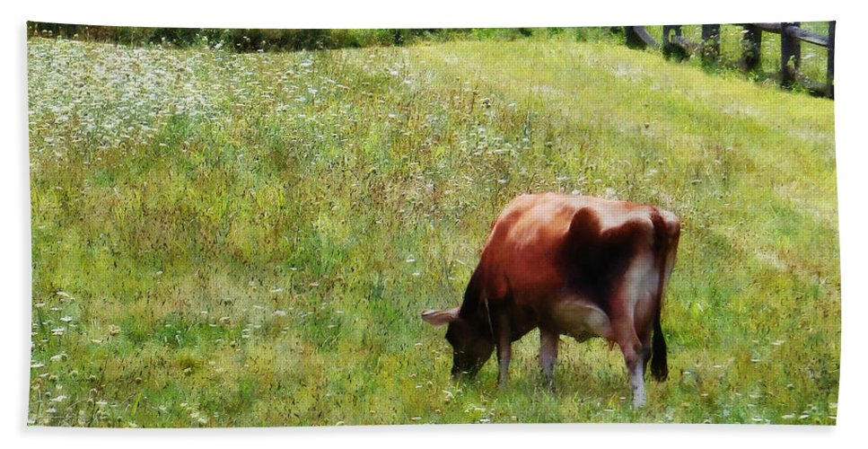 Cow Hand Towel featuring the photograph Cow Grazing In Pasture by Susan Savad