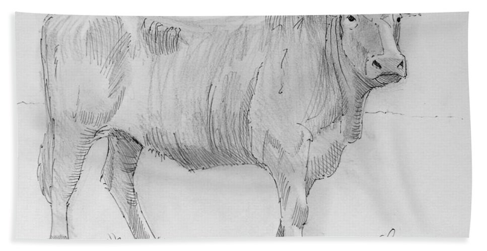 Mike Jory Cows Bath Sheet featuring the painting Cow Pencil Drawing by Mike Jory