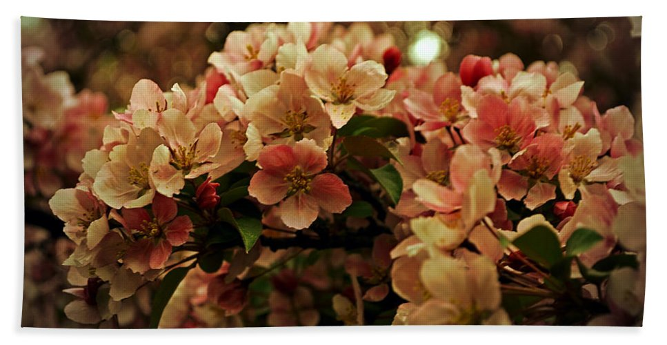 Crabapple In Bloom Bath Sheet featuring the photograph Crabapple In Bloom by Mary Machare