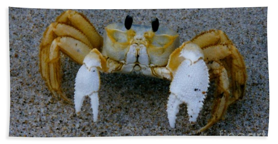 Carb Bath Sheet featuring the photograph Crabby - Atlantic Ghost Crab by D Hackett