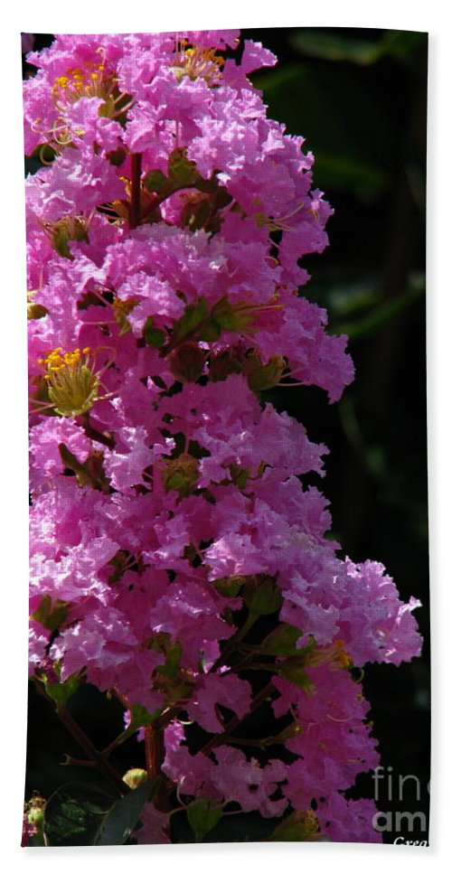 Art For The Wall...patzer Photography Bath Towel featuring the photograph Crape Myrtle by Greg Patzer