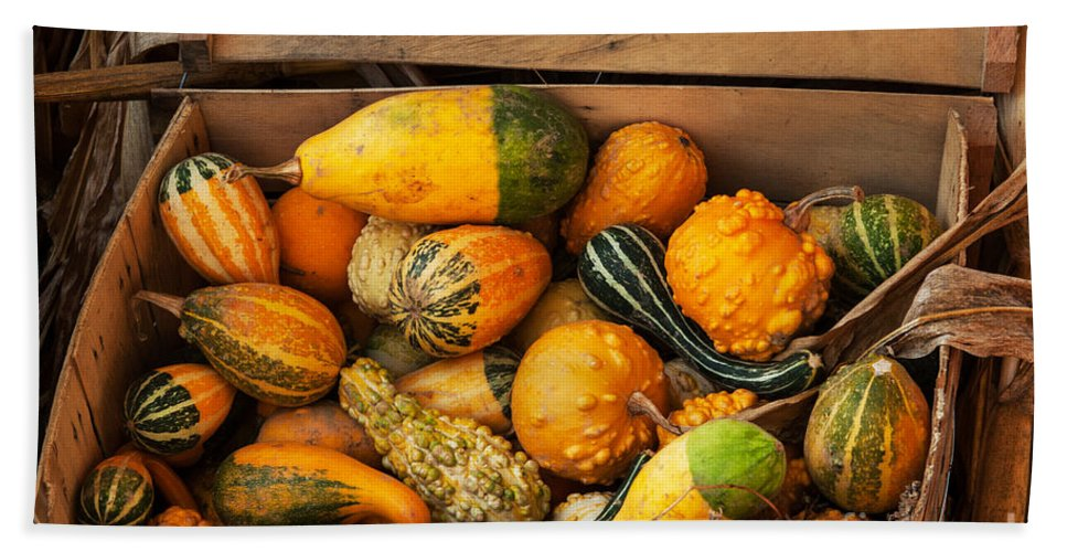 Iris Holzer Richardson Bath Sheet featuring the photograph Crate Filled With Pumpkins And Gourts by Iris Richardson