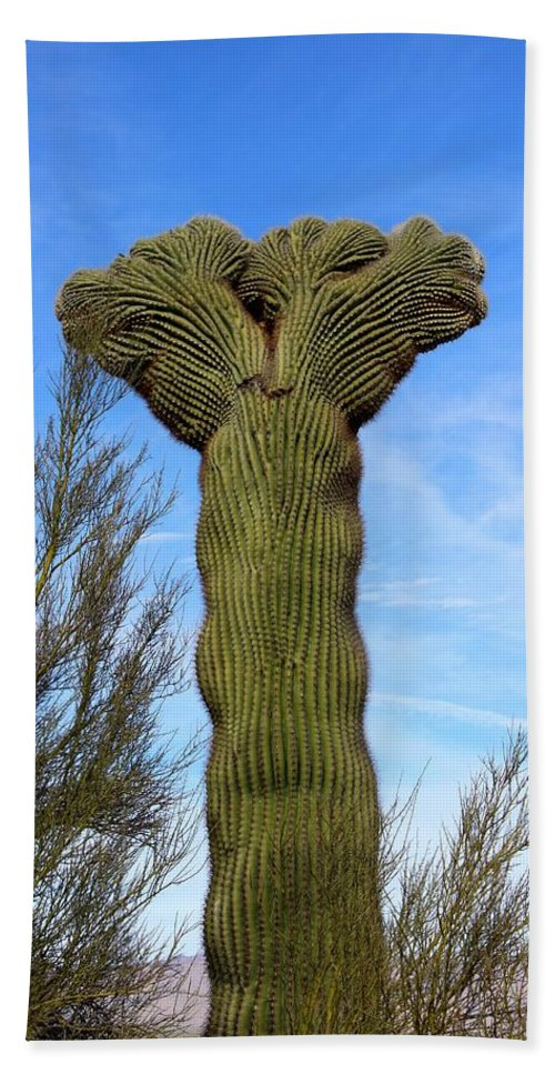 Cactus Hand Towel featuring the photograph Crested Cactus by Tiffany Erdman