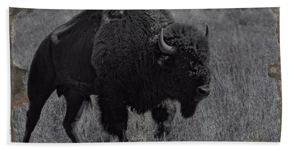 Wyoming Bath Sheet featuring the photograph Crossing The Plains by Image Takers Photography LLC