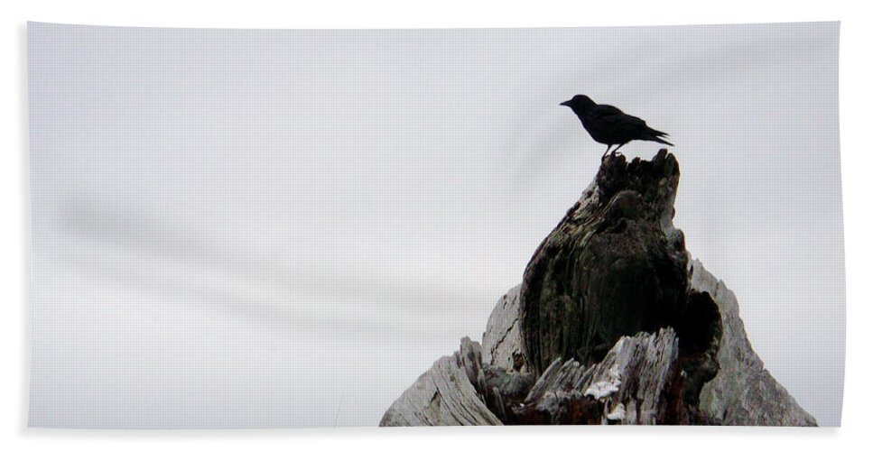Crow Bath Sheet featuring the photograph Crow by Claire McGee