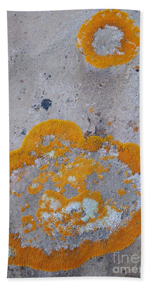 Nature Bath Sheet featuring the photograph Crustose Lichen, Utah by John Shaw