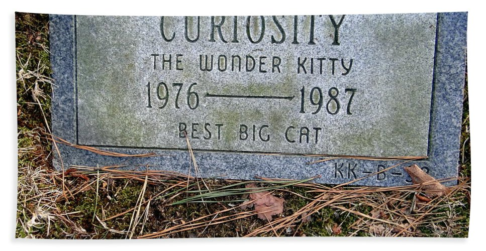 Tombstone Hand Towel featuring the photograph Curiosity by Ed Weidman