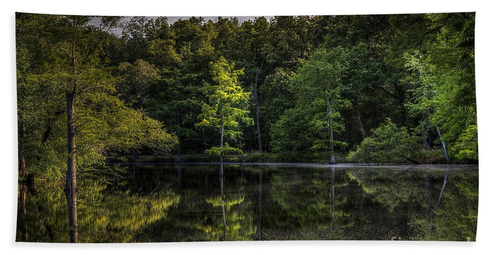 2014 Bath Towel featuring the photograph Cypress At Dusk by Larry Braun