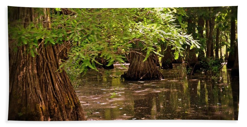 Swamp Bath Sheet featuring the photograph Cypress Swamp by Marty Koch