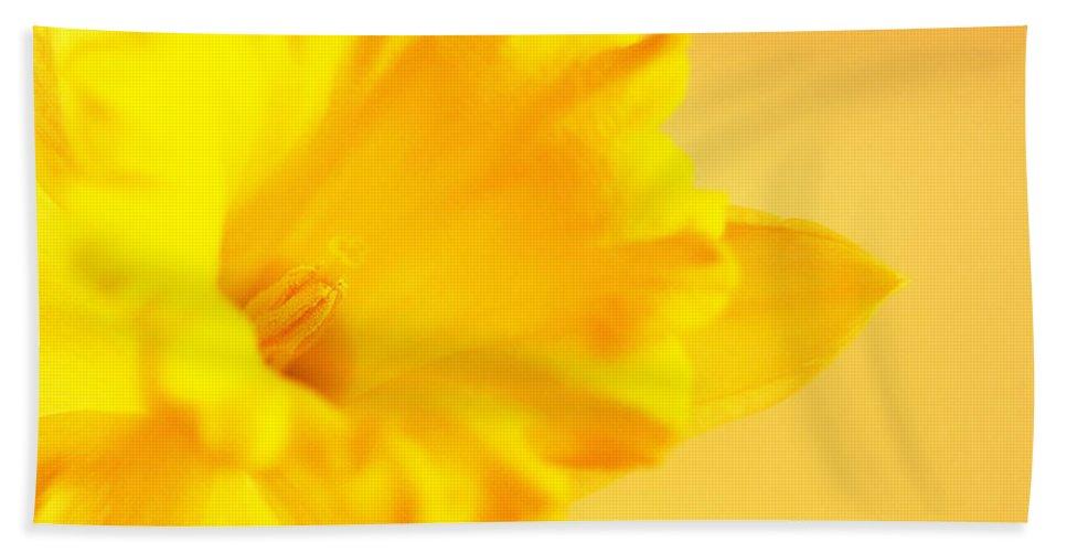 Daffodil Bath Sheet featuring the photograph Daffodil by Erin McCandless