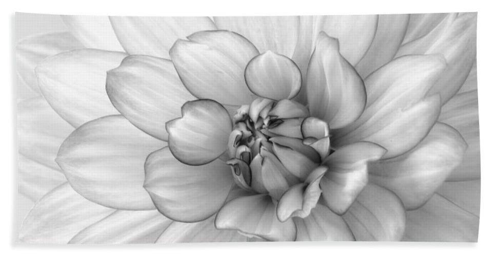 Dahlia Hand Towel featuring the photograph Dahlia Flower Black And White by Kim Hojnacki
