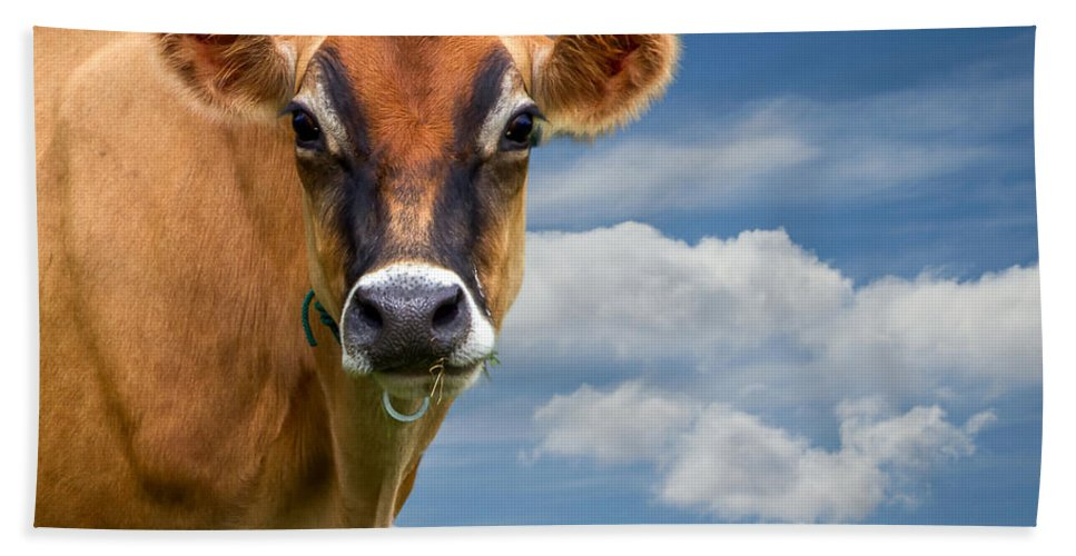 Cow Hand Towel featuring the photograph Dairy Cow Bessy by Bob Orsillo