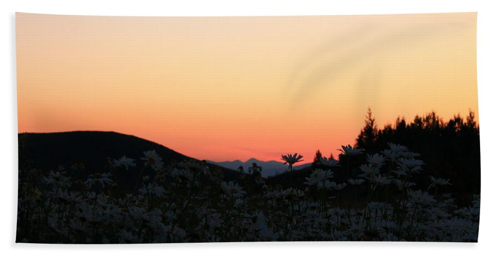 Jackson Hole Hand Towel featuring the photograph Daisies And Sunrise by Catie Canetti