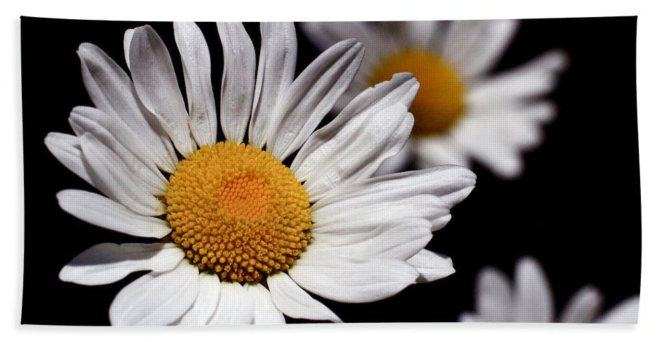 Daisies Bath Sheet featuring the photograph Daisies by Rona Black
