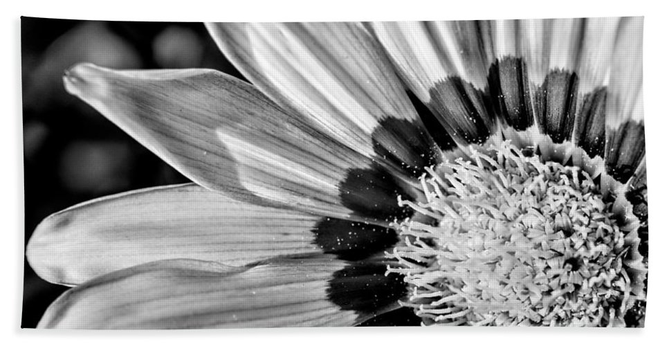 Flower Bath Sheet featuring the photograph Daisy - Bw by Christopher Holmes