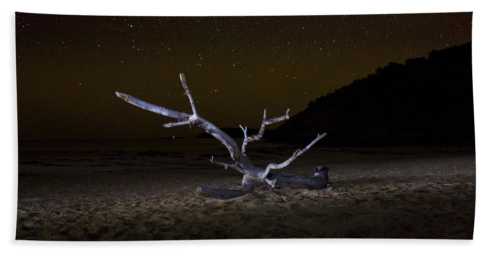 Driftwood Hand Towel featuring the photograph Dancing Drifter by Brent L Ander