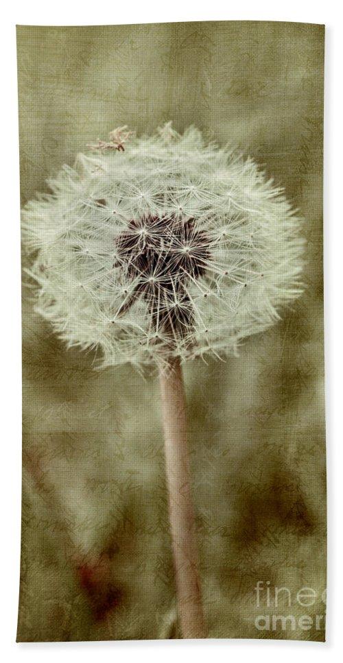 Dandelion Seedhead Bath Sheet featuring the photograph Dandelion Textures by Ann Garrett