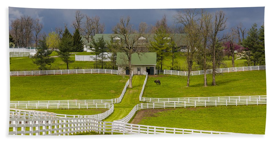 Animal Hand Towel featuring the photograph Darby Dan Farm Ky by Jack R Perry