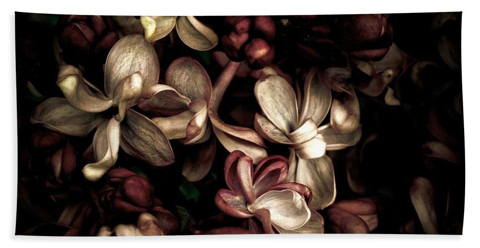 Flower Bath Sheet featuring the photograph Dark Flowers by Brothers Beerens