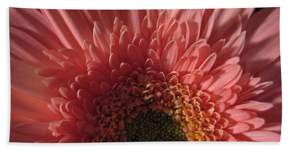 Flower Hand Towel featuring the photograph Dark Radiance by Ann Horn