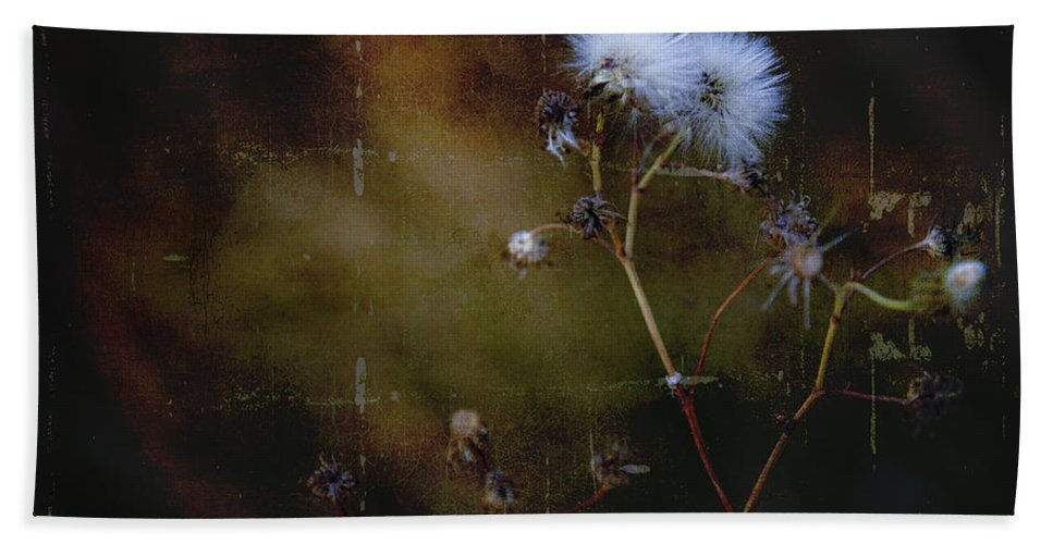 Thistle Bath Sheet featuring the photograph Dark Thistle by Theresa Tahara