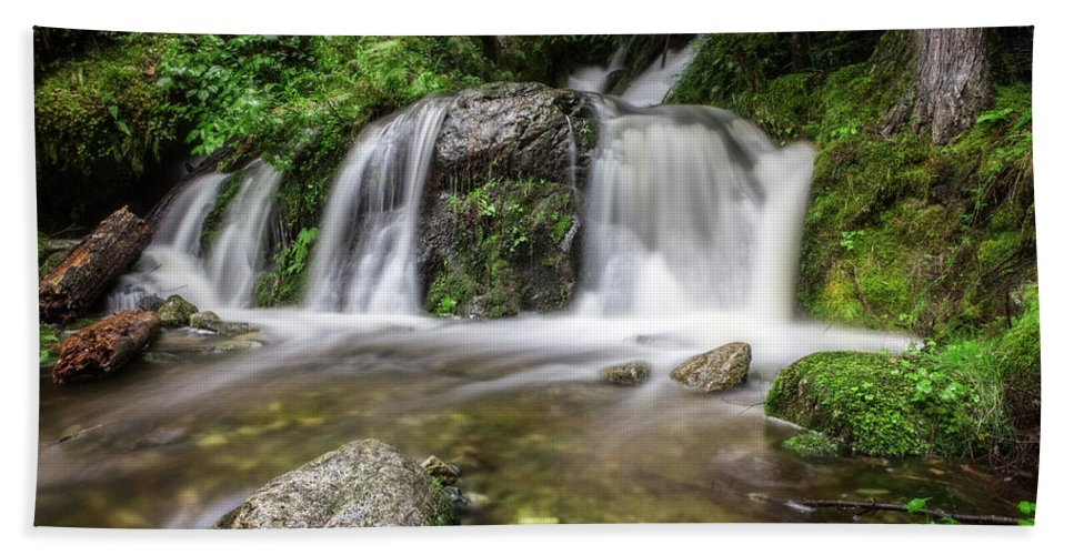 Forest Bath Sheet featuring the photograph Day 1000 - Lower Forest Glen Falls by Charlie Duncan