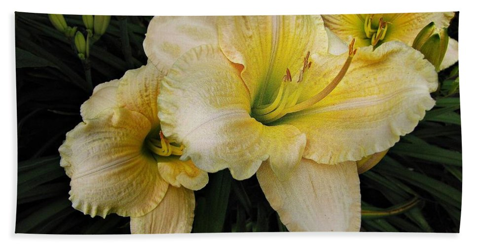 Day Lilies Bath Towel featuring the photograph Day Lilies A Short Life by David Dehner