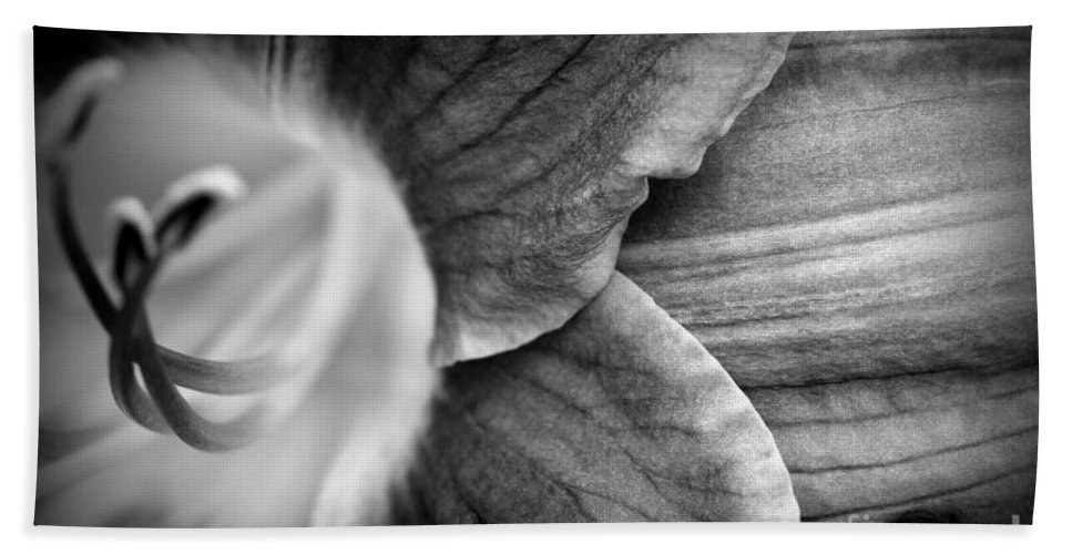 Day Bath Sheet featuring the photograph Day Lily Detail - Black And White by Kenny Glotfelty