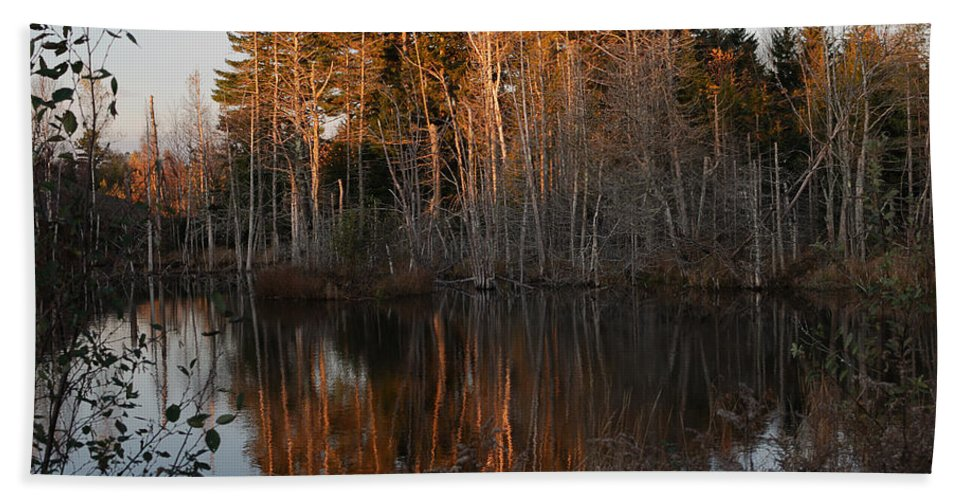 Pond Bath Sheet featuring the photograph Daybreak At The Pond by Susan Capuano