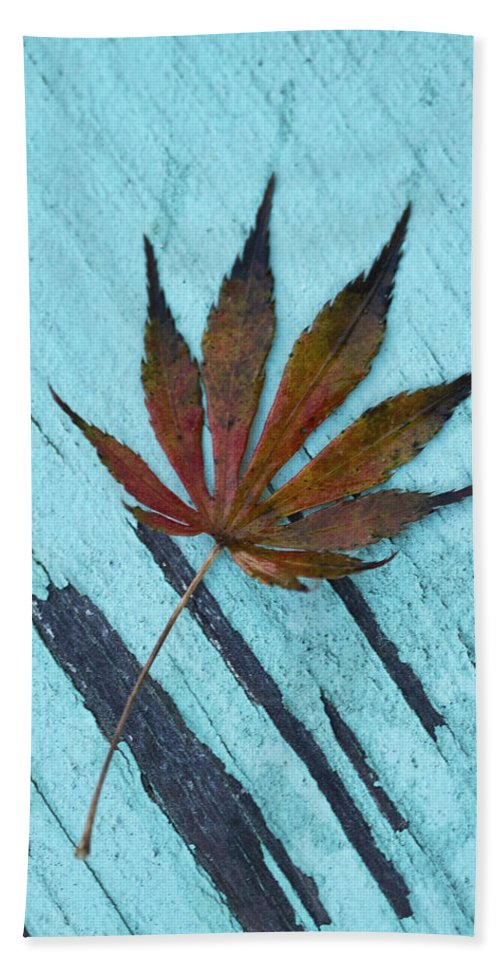 Acer Palmatum Bath Sheet featuring the photograph Dazzling Japanese Maple Leaf by Kathy Clark
