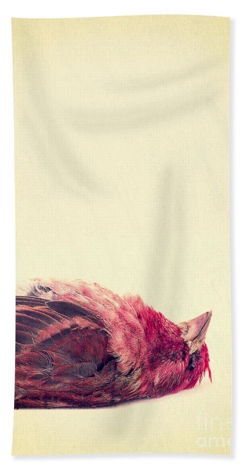 Dead Hand Towel featuring the photograph Dead by Edward Fielding