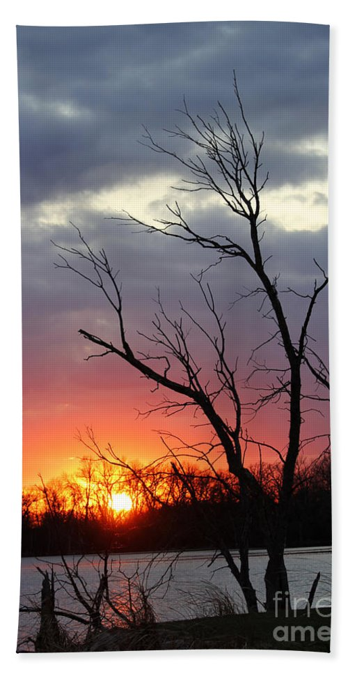 Tree Bath Sheet featuring the photograph Dead Tree At Sunset by Lori Tordsen