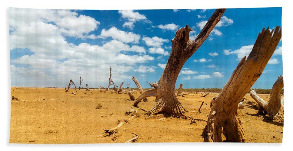 Desert Bath Sheet featuring the photograph Dead Trees In A Desert Wasteland by Jess Kraft