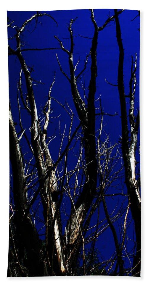 Decorator Art Bath Sheet featuring the photograph Deadwood Fingers by Ric Bascobert