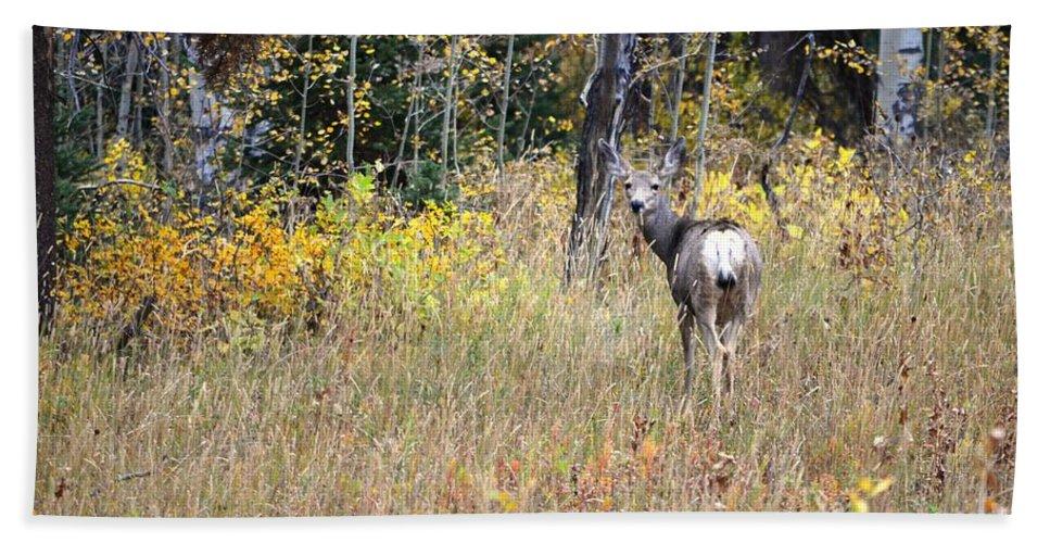 Deer Bath Sheet featuring the photograph Deer Camoflauged by Deanna Cagle